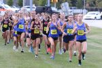 Lexington Varsity Girls Cross Country, County Meet