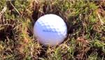 Boy's Golf Tryout Info