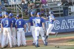 Cats Complete Sweeps of River Bluff and White Knoll