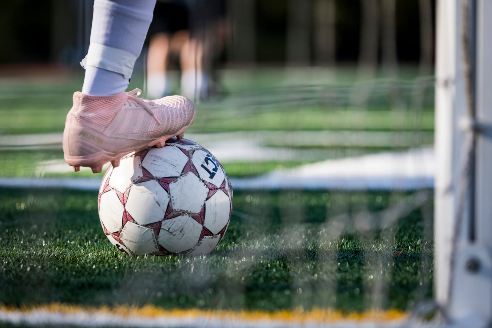 Soccer Adds Coaches for '19-'20