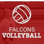 Alumnus Joel Schneidmiller pursues volleyball career at UC Irvine