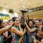 2016 Girls Basketball Preview: AHS guards may help Hamilton