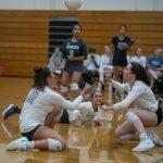 Volleyball hosts Wildcat Tournament   St 8.24.2019