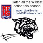 Live Stream Wildcat Volleyball vs Southern | M 11.23.2020