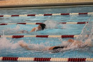 Swim 2015-2016