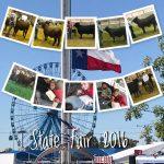 Ennis FFA Cattle State Fair Results
