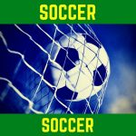 GSoccer WINS 2018 D5-Wild Card C Game over SFHS 2-0 Final!