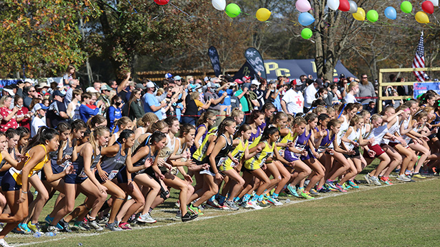 Raiders place in the top 10 at the AHSAA 6A State Cross Country Championships