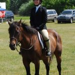 Equestrian Looking for Interested Members for the New Season