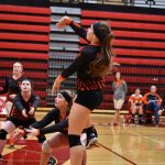 HVL Volleyball Has Great Day at  Michigan Lutheran Seminary Tournament