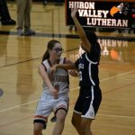 Girls Junior Varsity Basketball beats Whitmore Lake 39 – 17
