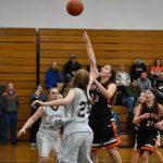 Girls Junior Varsity Basketball beats Lutheran High School Westland 41 – 17