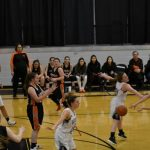 Girls Varsity Basketball beats Lutheran High School Westland 47 – 40