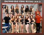 Edgewood Girls Swim Team Begin Sectional Competition Tonight at Columbus North with Finals on Saturday