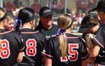 SF Softball in the News