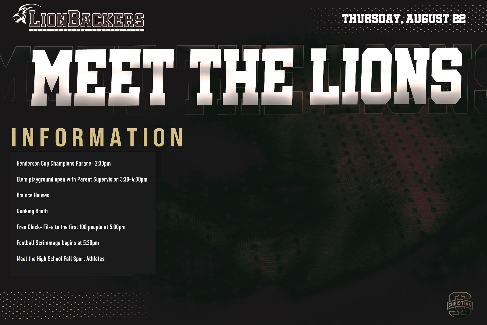 MEET THE LIONS THIS THURSDAY- FUN FOR ALL AGES