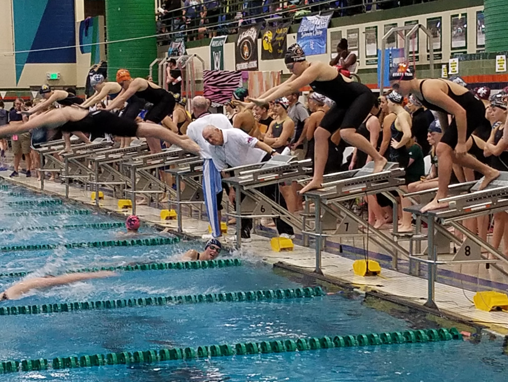 Tiger Swimmers Have Record Setting Day at State Meet