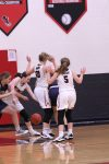 Girls Basketball vs Hillsdale