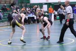 WCAL Wrestling Photo Gallery
