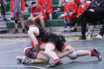 WCAL Wrestling Photo Gallery pt 2