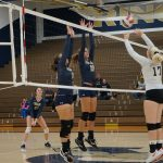 Volleyball falls short against Albert Gallatin