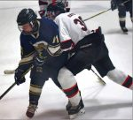 Hockey beats Elizabeth Forward for second time in a week