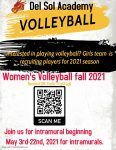 Are You Interested in Playing Girl's Volleyball for DSA?