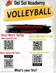 Are You Interested in Playing Volleyball for DSA?