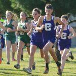 CHS cross country team brings home awards