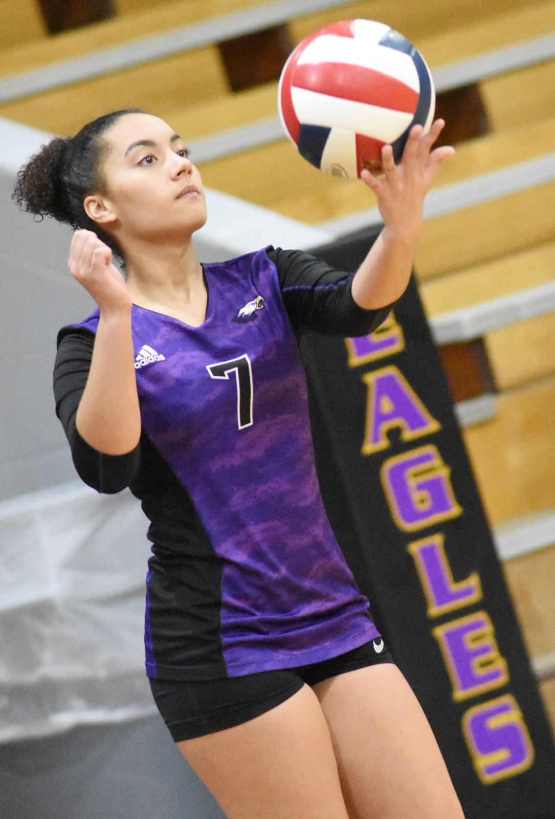 VOLLEYBALL TEAM TO HOST ALL A SECTIONAL GAME