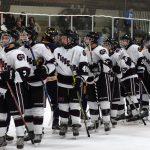 Hockey Tops Wyandotte 2-1