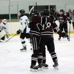 MHSAA Hockey Regional Information