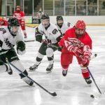 2019 Hockey Regional Championship