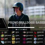 Provo Baseball 2020 Schedule