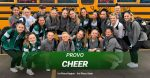 Competitive Cheer: 1st Place in Region/3rd Place in State