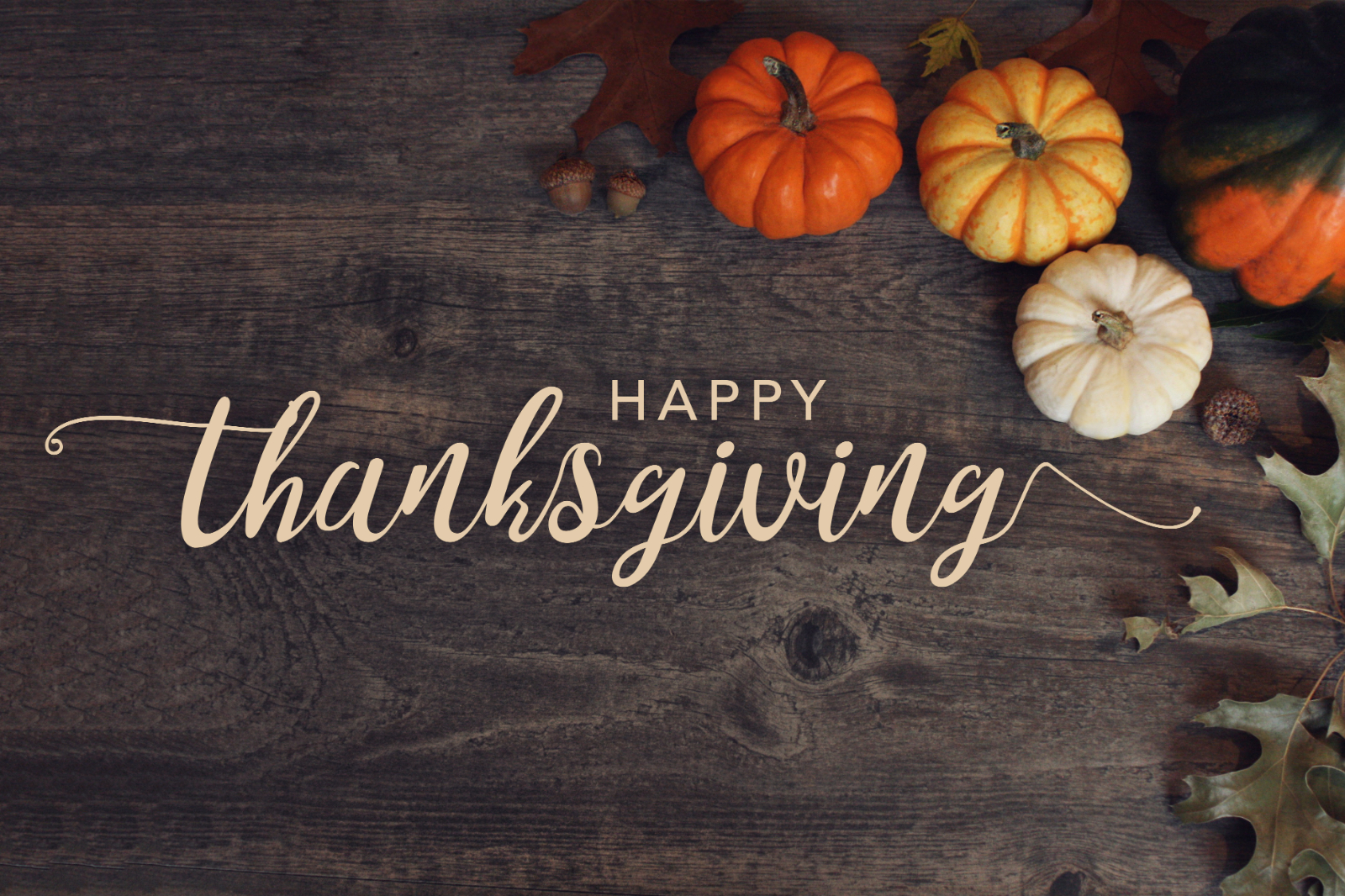 Wishing You All a Wonderful Thanksgiving!