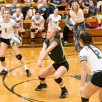Volleyball Team Beats Keystone in Sectional Semifinal Match
