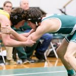 Bleich Wins Fourth District Title, Qualifies for State Tournament