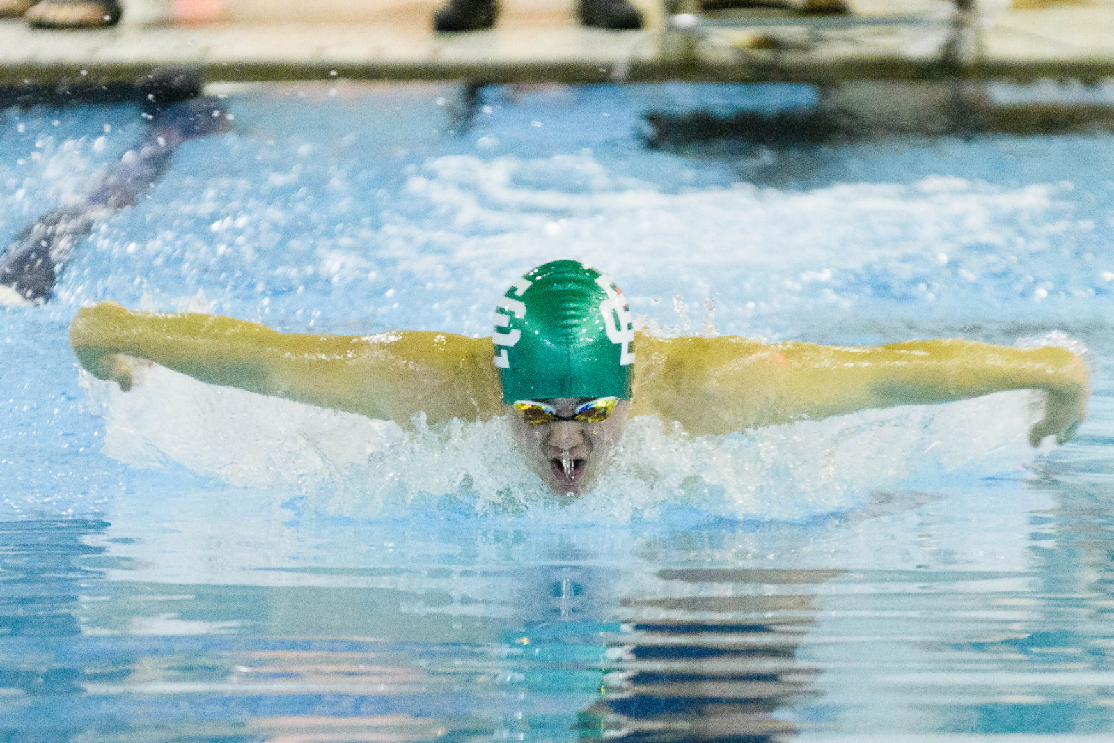 Panther Swimmers & Divers Qualify for Districts