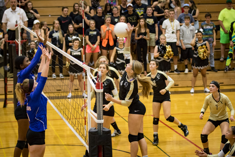 Volleyball Black and Gold Game