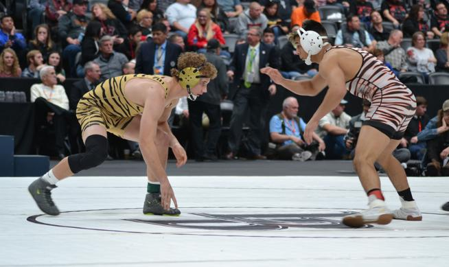 Tiger Wrestling Results from State Championships