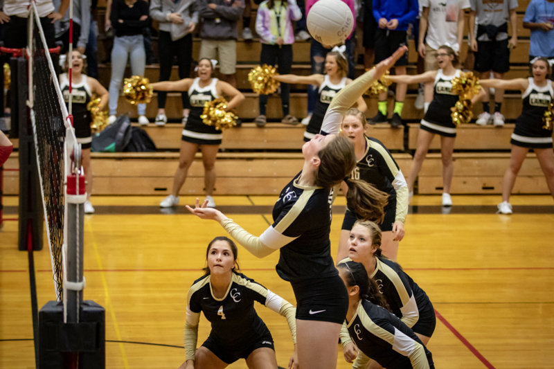 Tiger Volleyball Black and Gold Game!!!