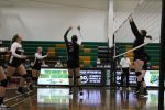 JV Volleyball shuts down the Eagles