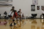 JV Volleyball falls to Ansonia