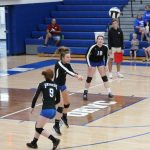 Shiner volleyball loses in a tough fought match at home to Morristown