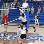 Shiner Volleyball Loses to Southwestern in a Tough Match