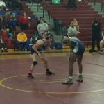 Nobles wins Lower State as 5 wrestlers qualify for State
