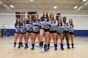 Volleyball 2017