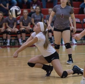 Volleyball vs Warrensville Heights: Photos By Russ Gifford