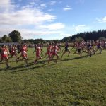 Cross Country Dominates Ludington Invite